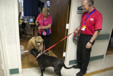 Fish Window Cleaning Owner Volunteers Pet Dog for Therapy Patients