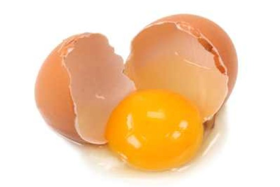 How to Remove Raw Eggs from Siding and Vehicles