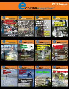eClean 2013 Issues Compiled