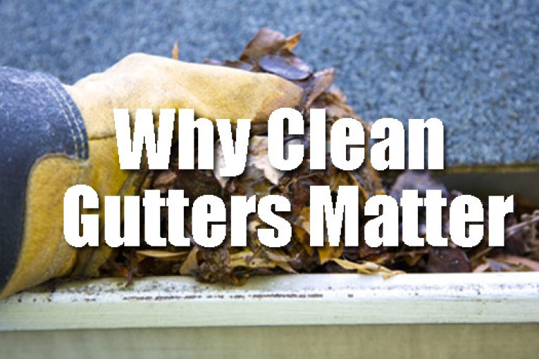 Why Clean Gutters Matter