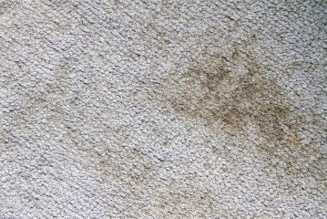 Reducing Carpet Cleaning Frequency is a False Economy