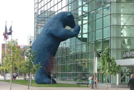 Denver Blue Bear Gets Power Wash Bath