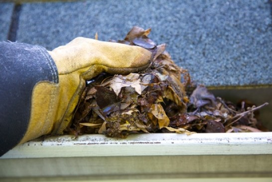 Angie's List Promotes Value of Gutter Cleaning